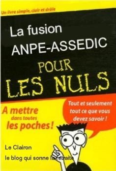 fusion-pour-les-nuls.1196439906.jpg