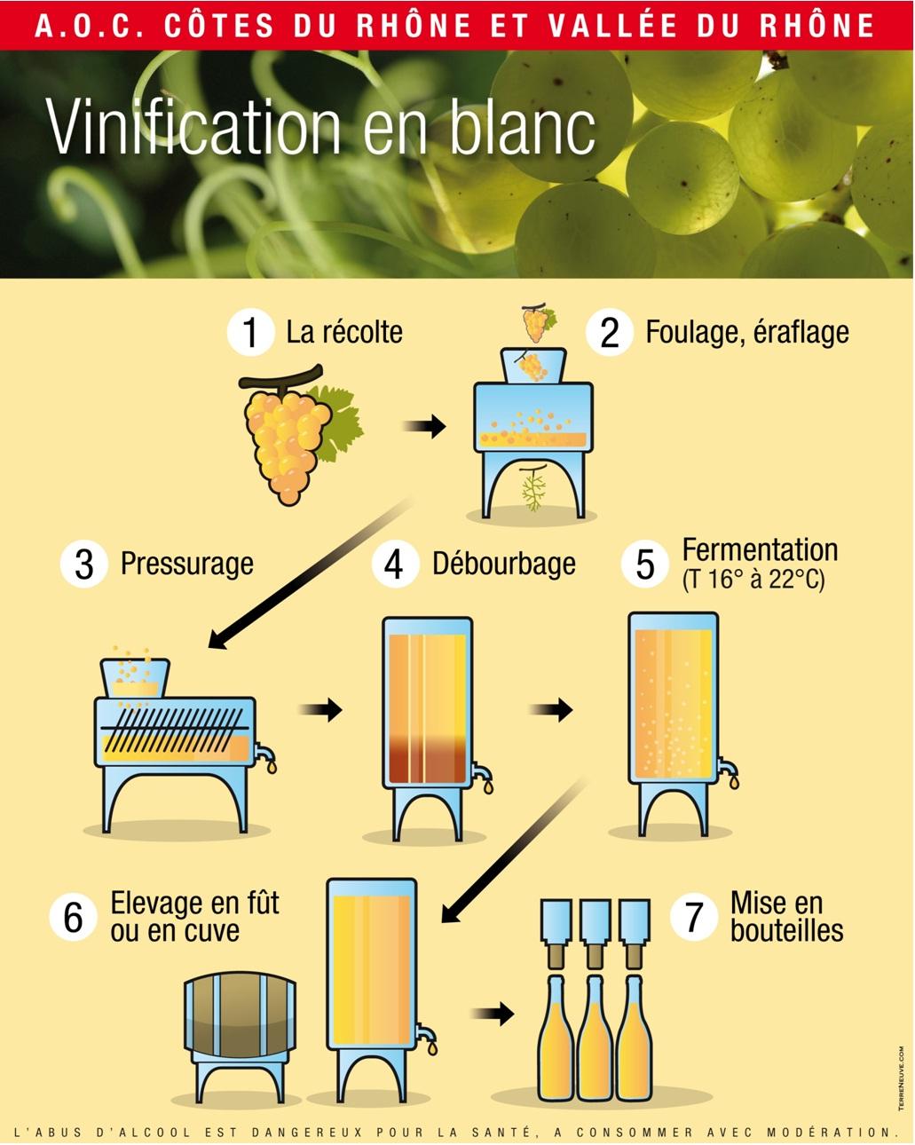 vinification blanc